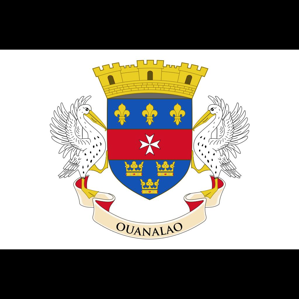 Saint barthélemy flag icon