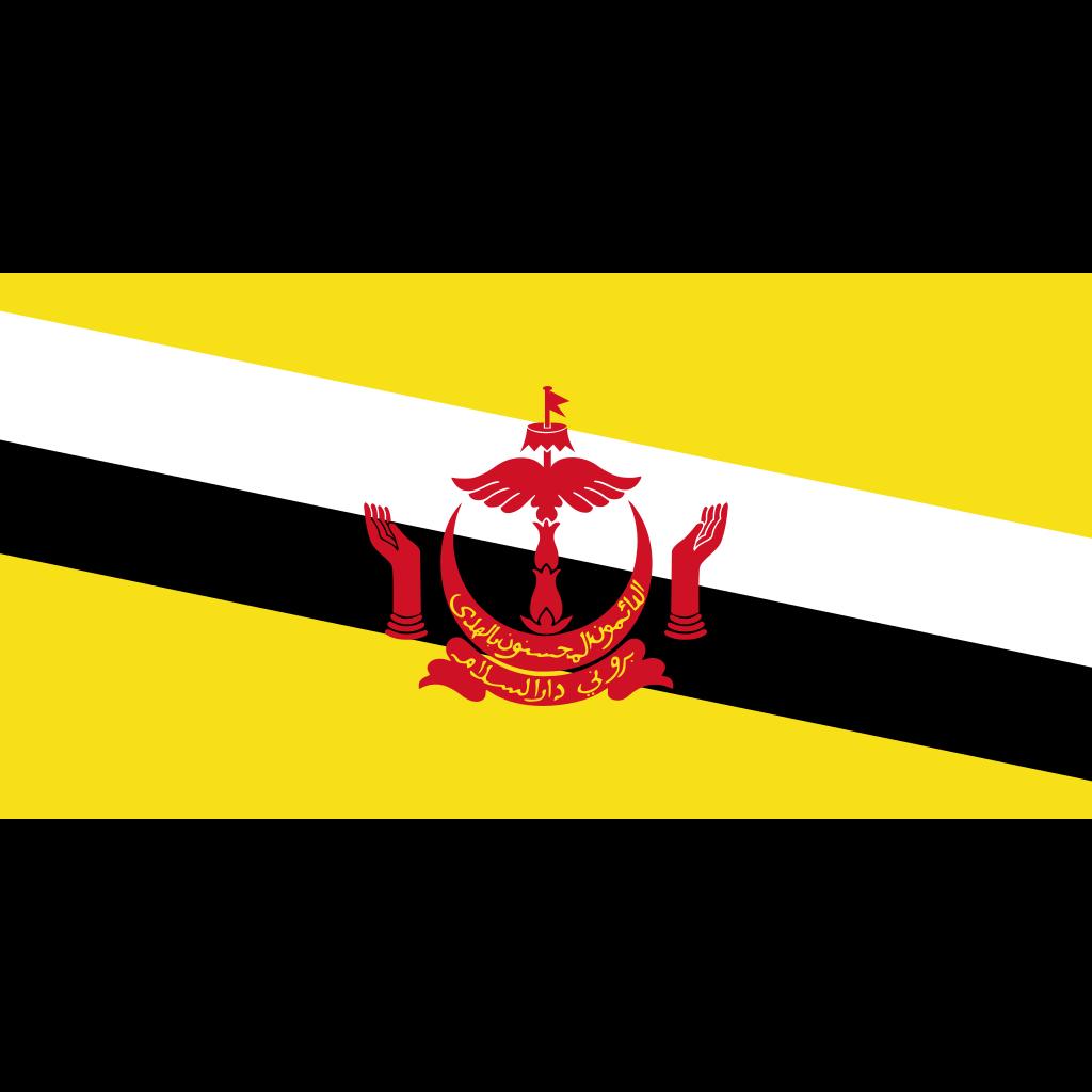 Brunei darussalam flag icon