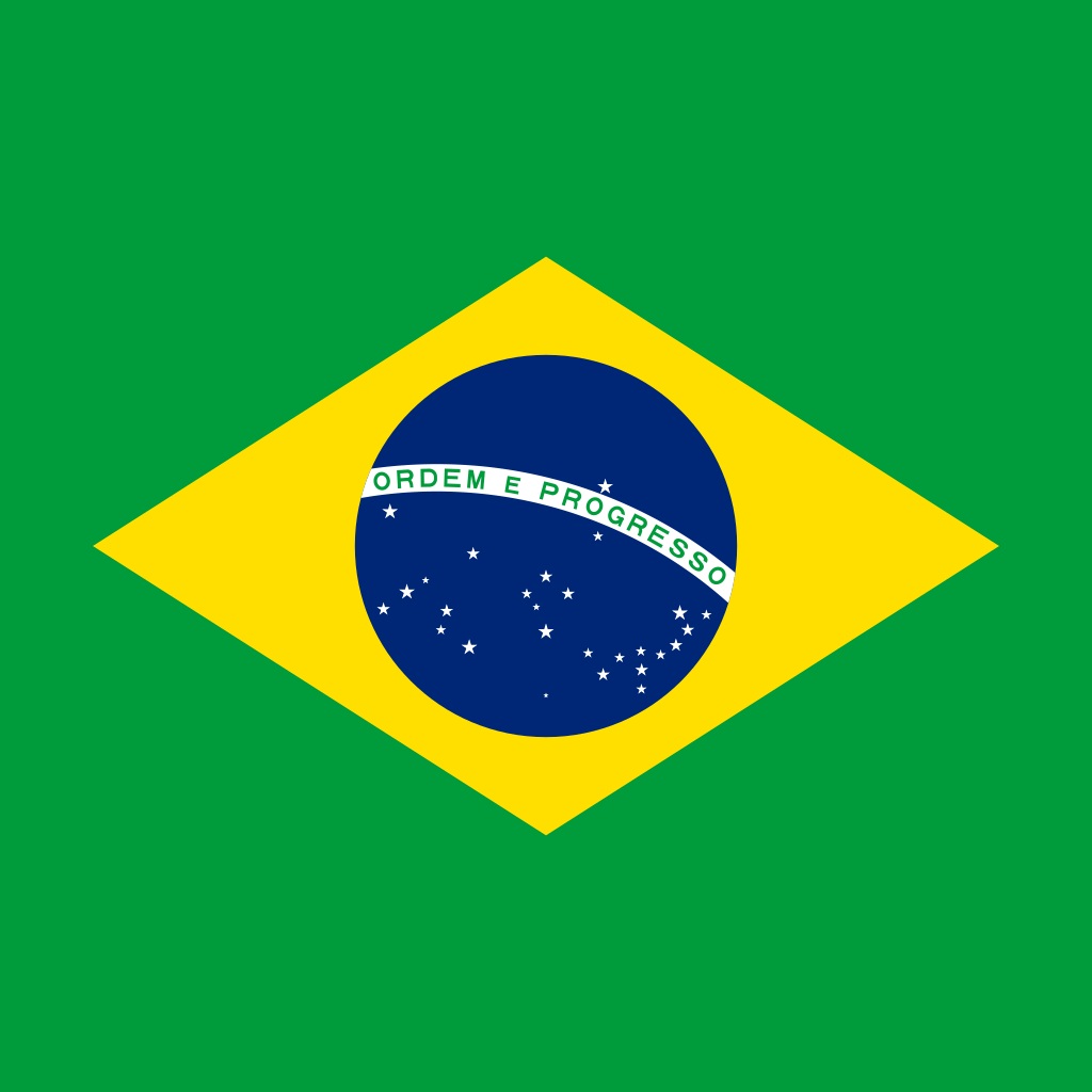 Federative republic of brazil flag icon