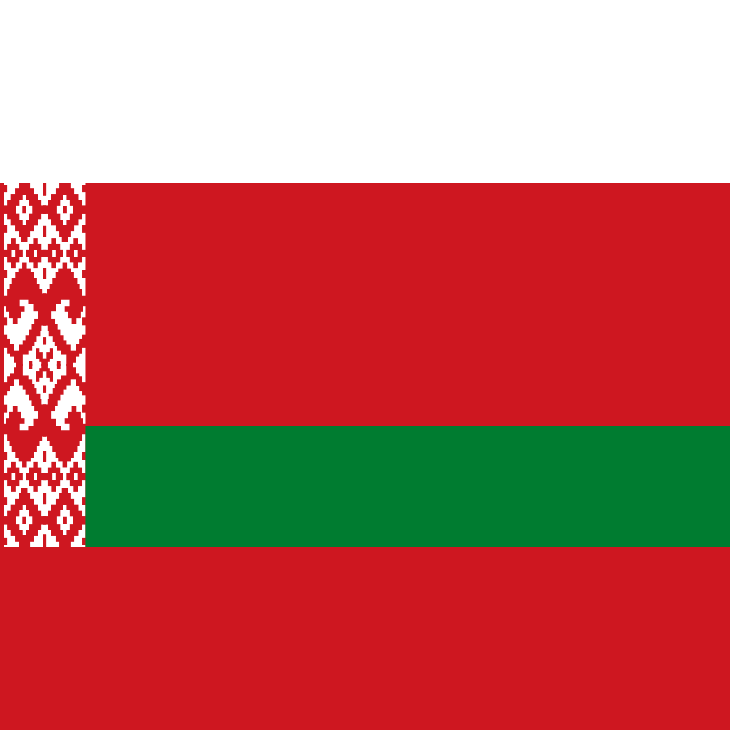 Republic of belarus flag icon