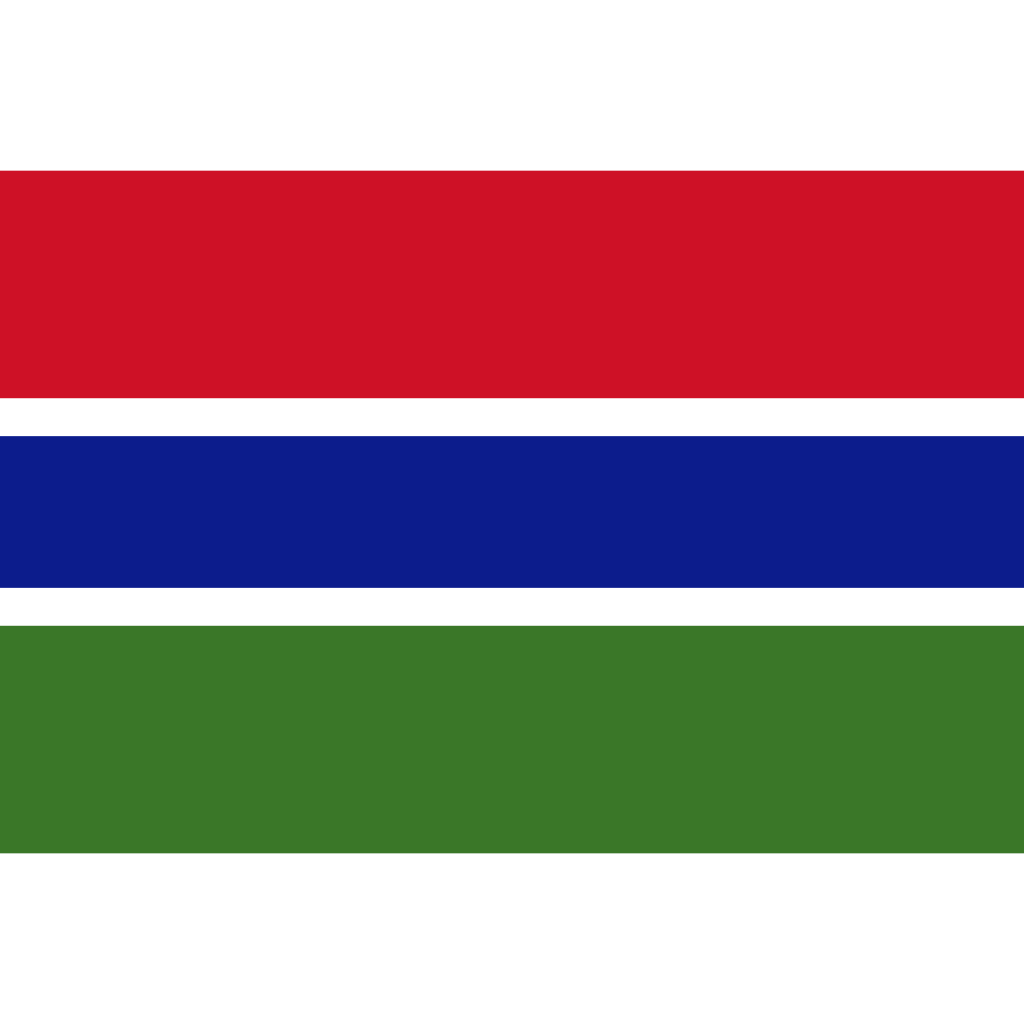 Republic of the gambia flag icon