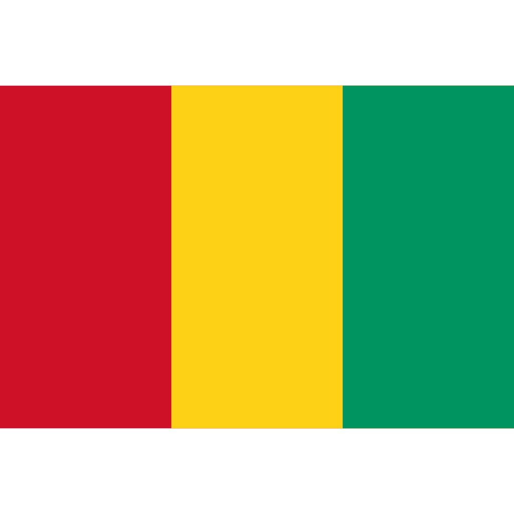Republic of guinea flag icon