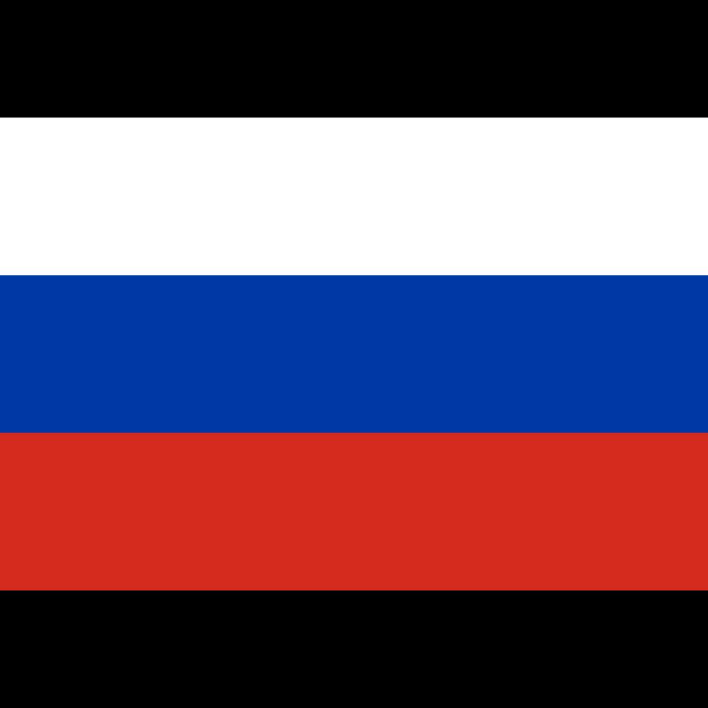Russian federation flag icon