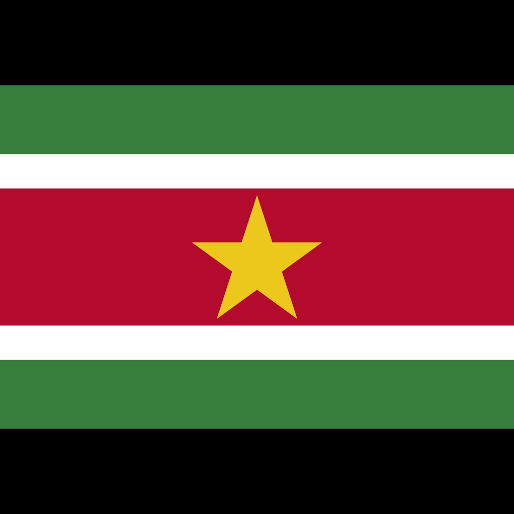 Republic of suriname flag icon