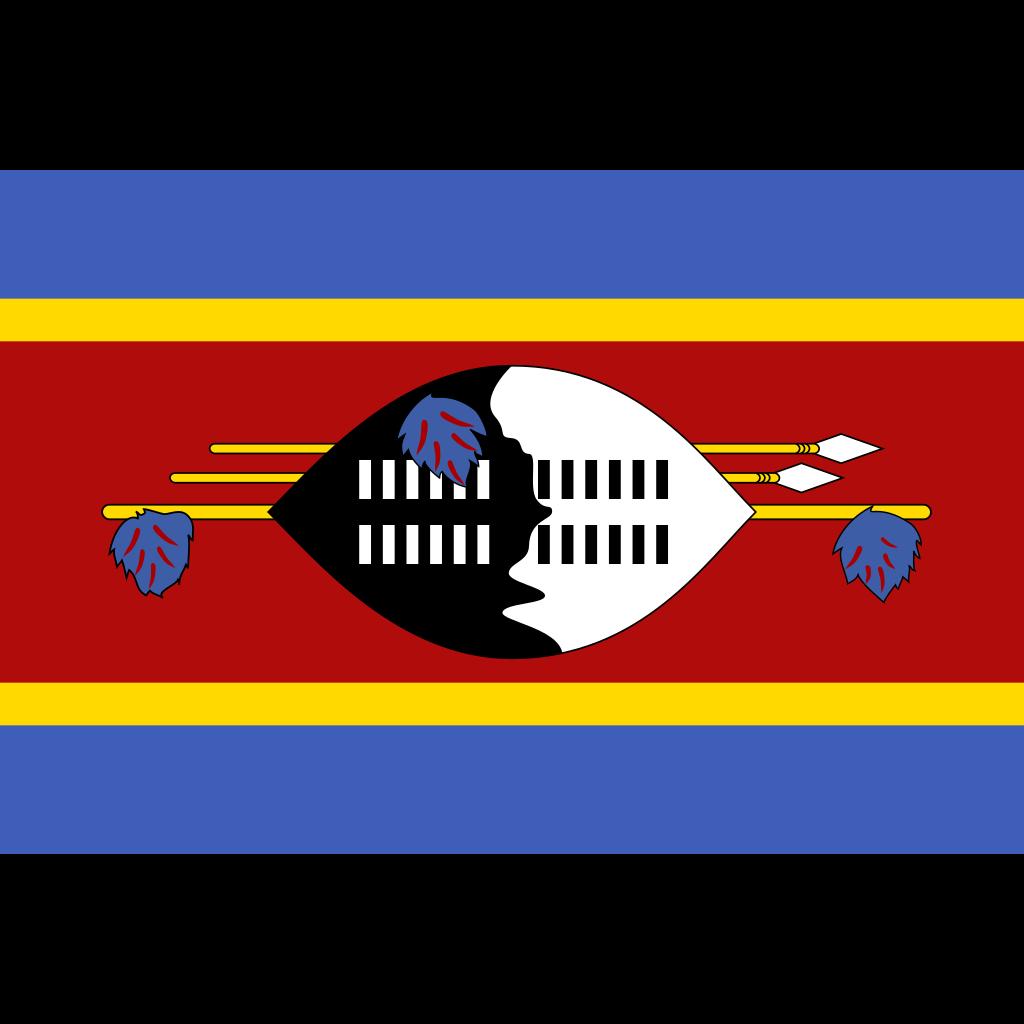 Kingdom of eswatini flag icon