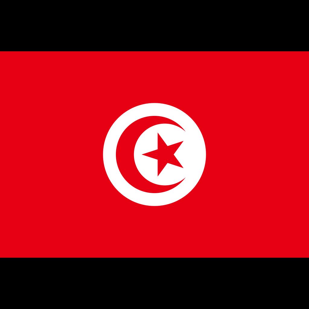 Tunisian republic flag icon