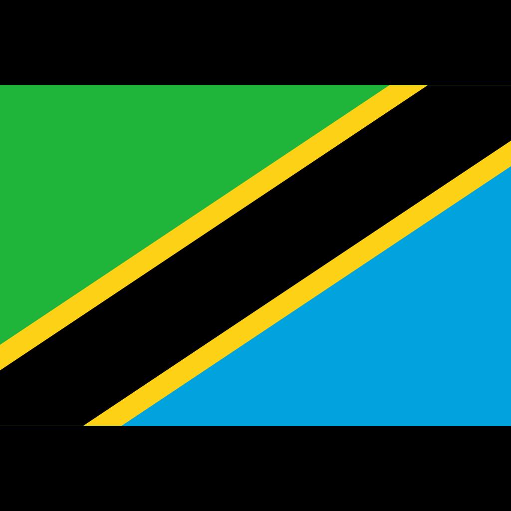 United republic of tanzania flag icon